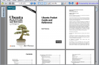 2010_01_FreePDFReader_Ubuntu_Linux_Karmic_Koala